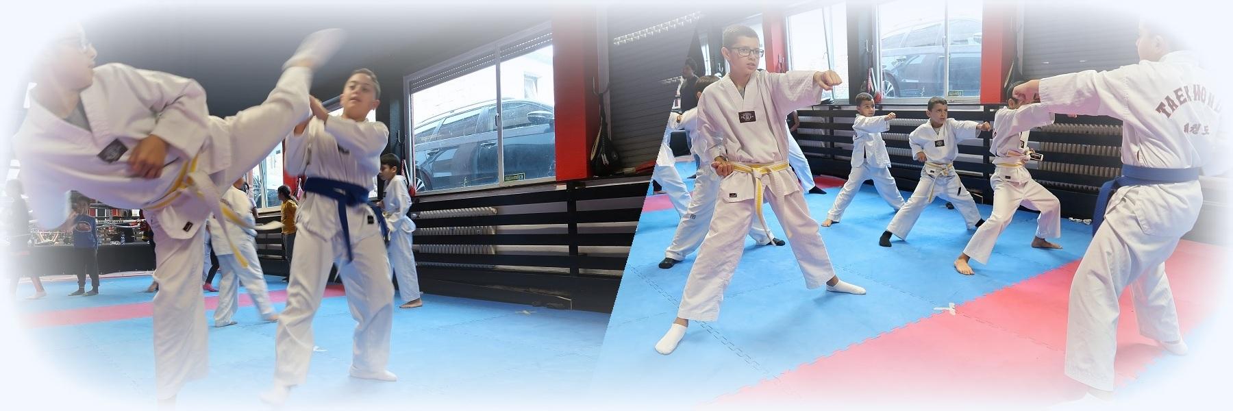 Taekwondo-KuJ-Header-3